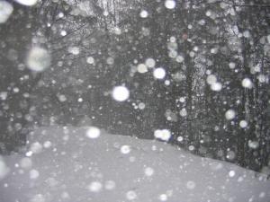 neige-tombante